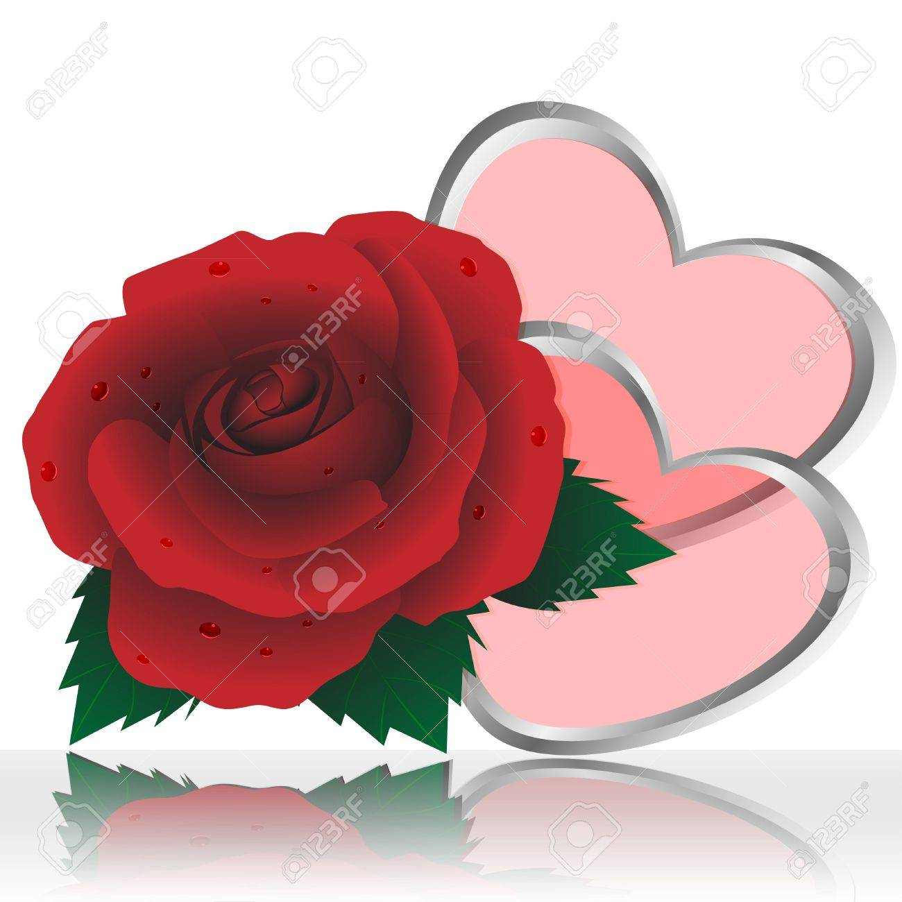 Two Hearts And Rose Of Red Color On A White Background Royalty Free ...