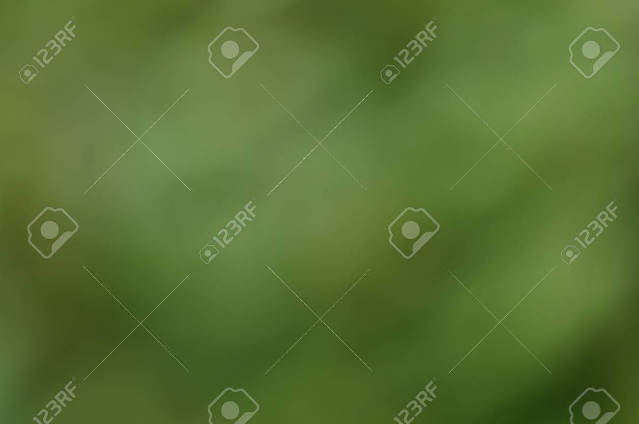 Soft green blurred bokeh for background, screen or wallpaper  Suitable for text   copy  Christmas  Brochure layout design  Web Stock Photo - 24235075