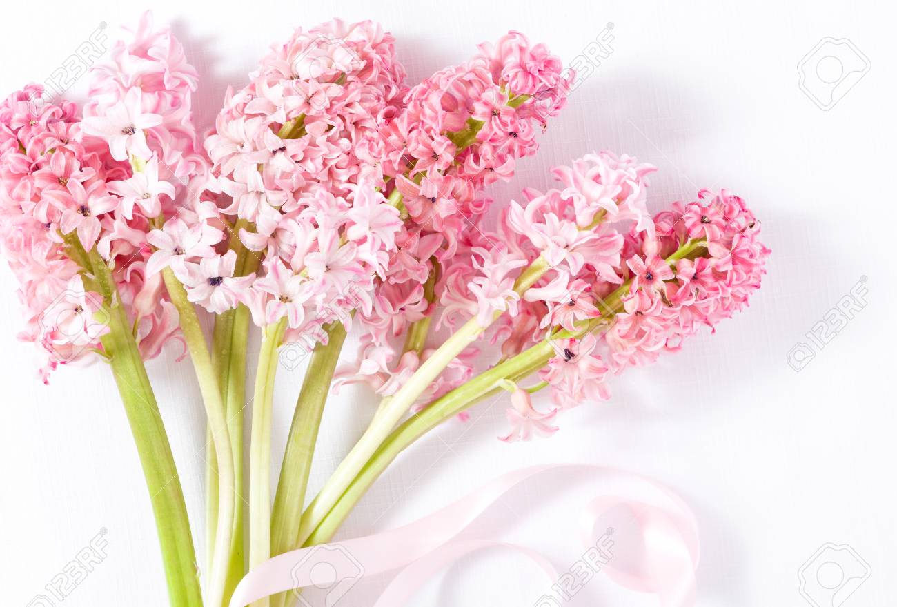 Close up of hyacinth bouquet with pink ribbon stock photo picture close up of hyacinth bouquet with pink ribbon stock photo 100368778 izmirmasajfo