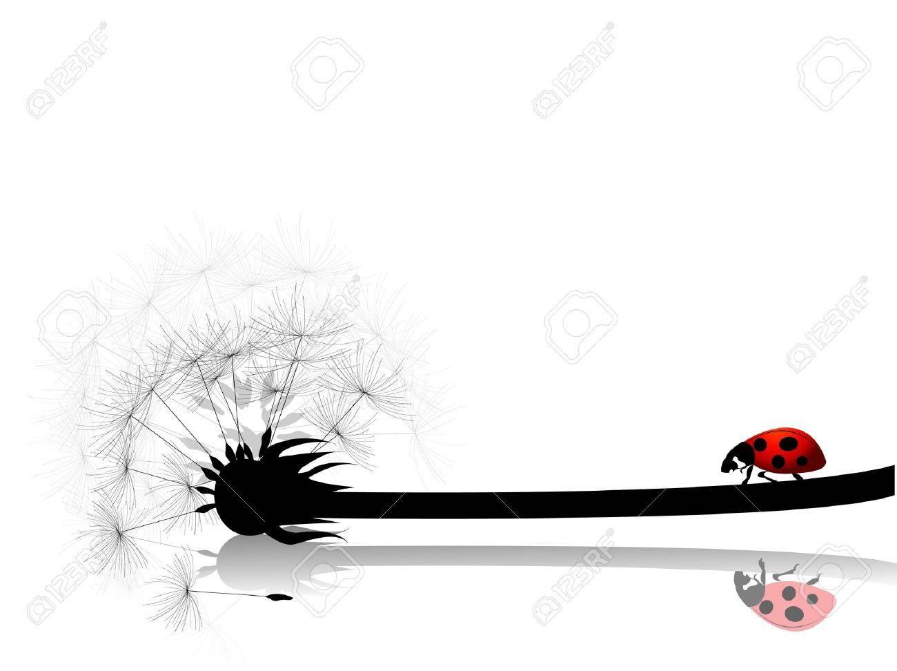 dandelion card with ladybug - 7578577