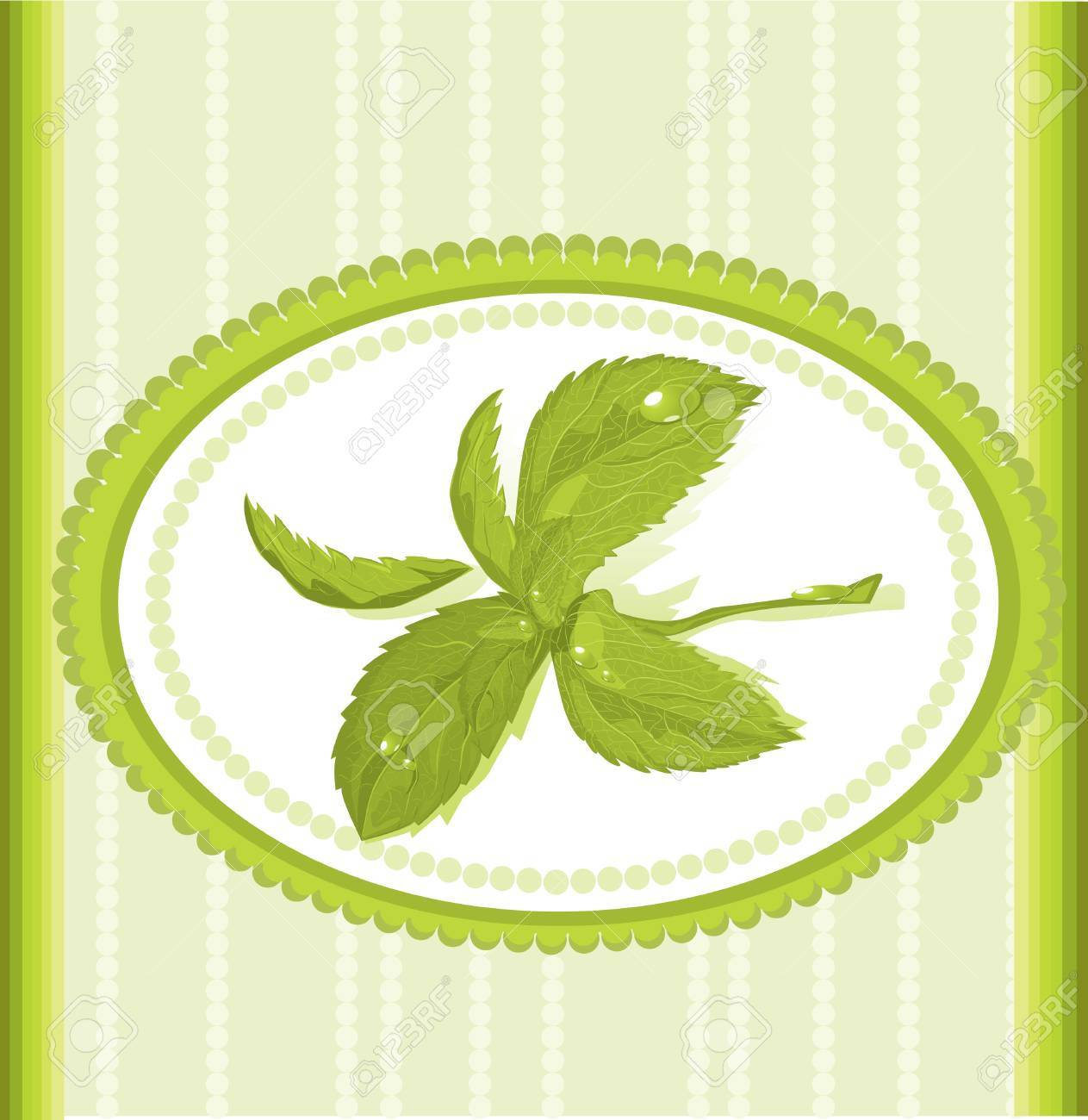 ornament mint frame Stock Vector - 10718620