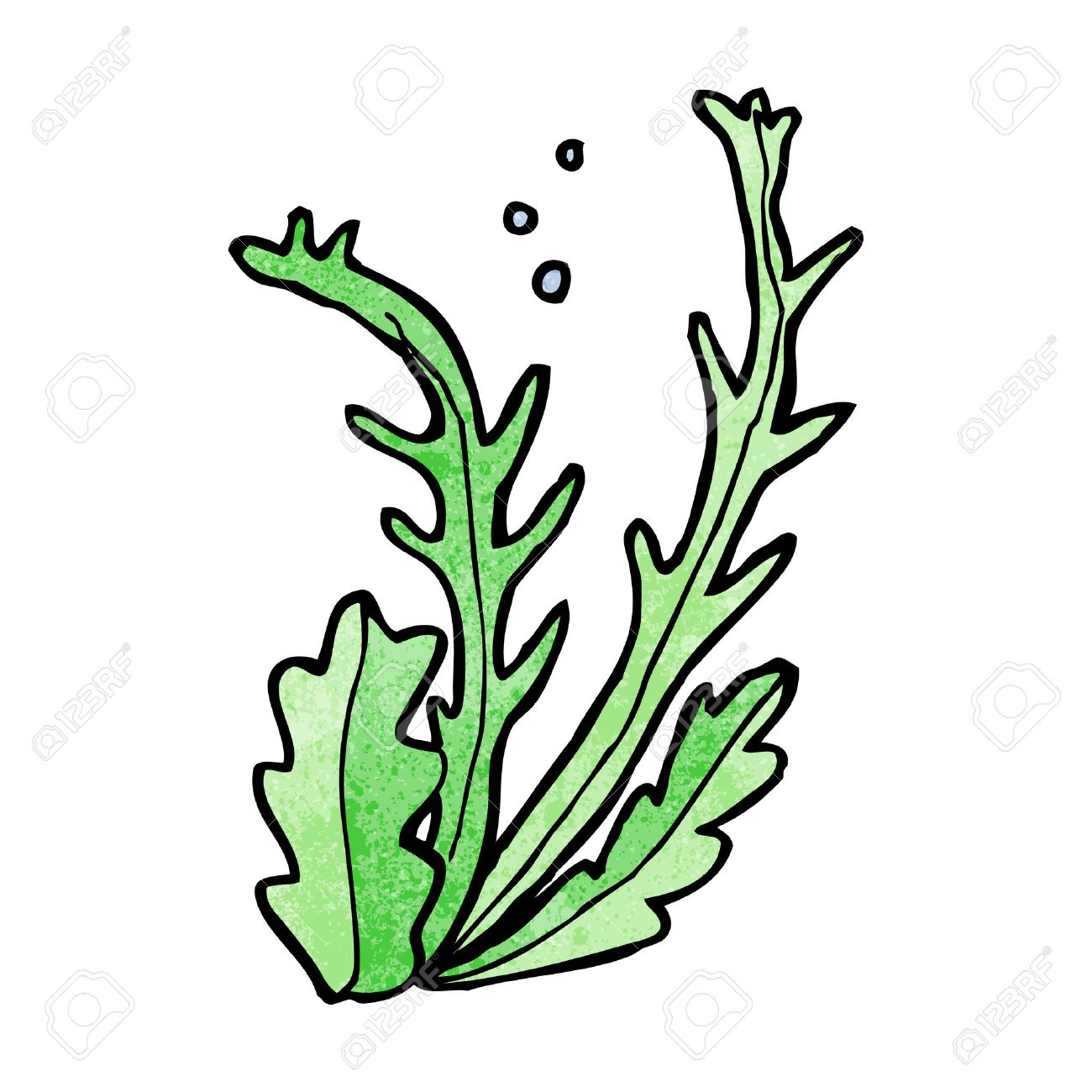 cartoon seaweed royalty free cliparts vectors and stock rh 123rf com seaweed clipart images seaweed clip art images