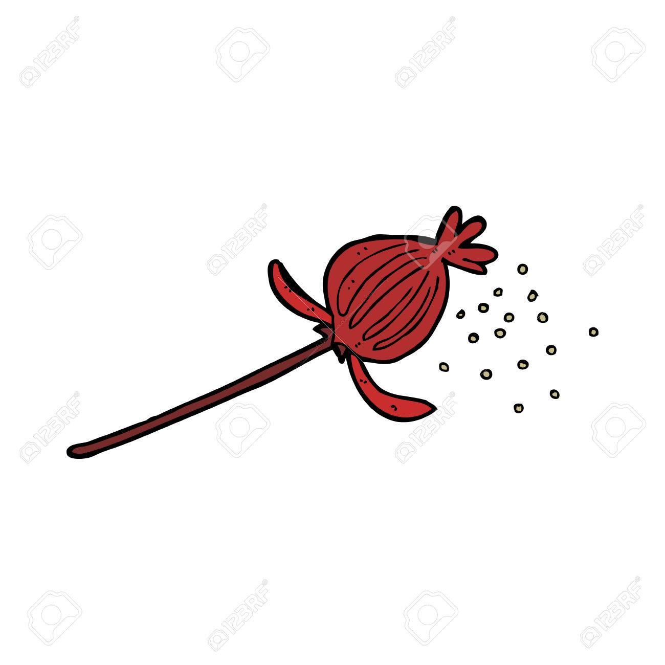 Cartoon dried poppy flower royalty free cliparts vectors and stock cartoon dried poppy flower stock vector 27860101 mightylinksfo