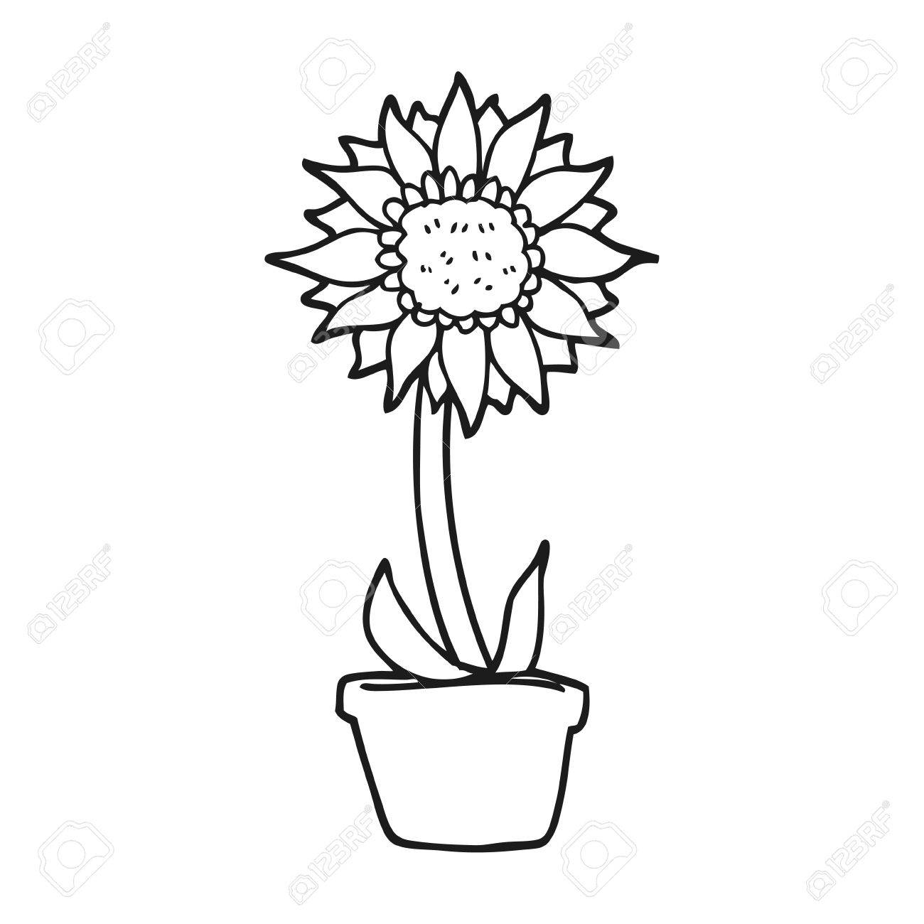 Freehand Drawn Black And White Cartoon Sunflower Royalty Free