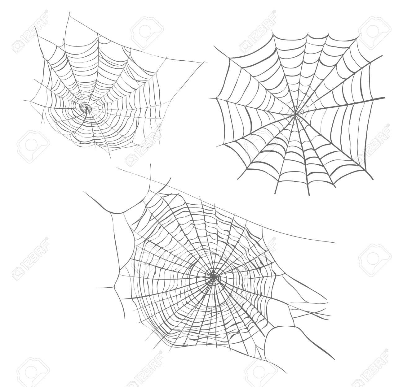 Spiderweb Sketch Vector Illustration. Colección De Dibujo A Mano De ...