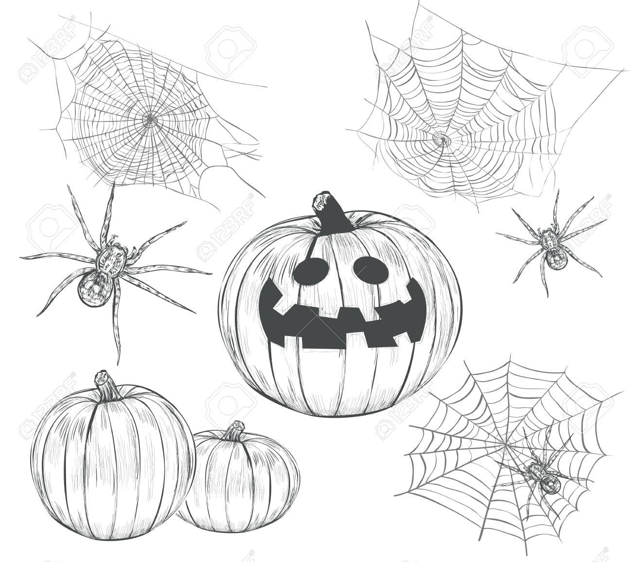 Collection D Halloween De Dessins Vectoriels Définissez La Citrouille D Halloween La Toile D Araignée Et L Araignée