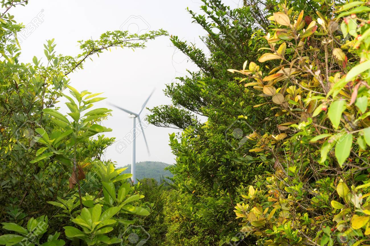 Low View Of Wind Turbines Tower In Lamma Island Hong Kong With Towers Great Rock Windpower Blades