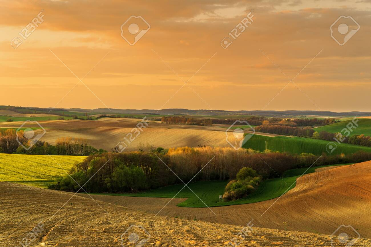 A beautiful spring landscape of the hills - 123330972