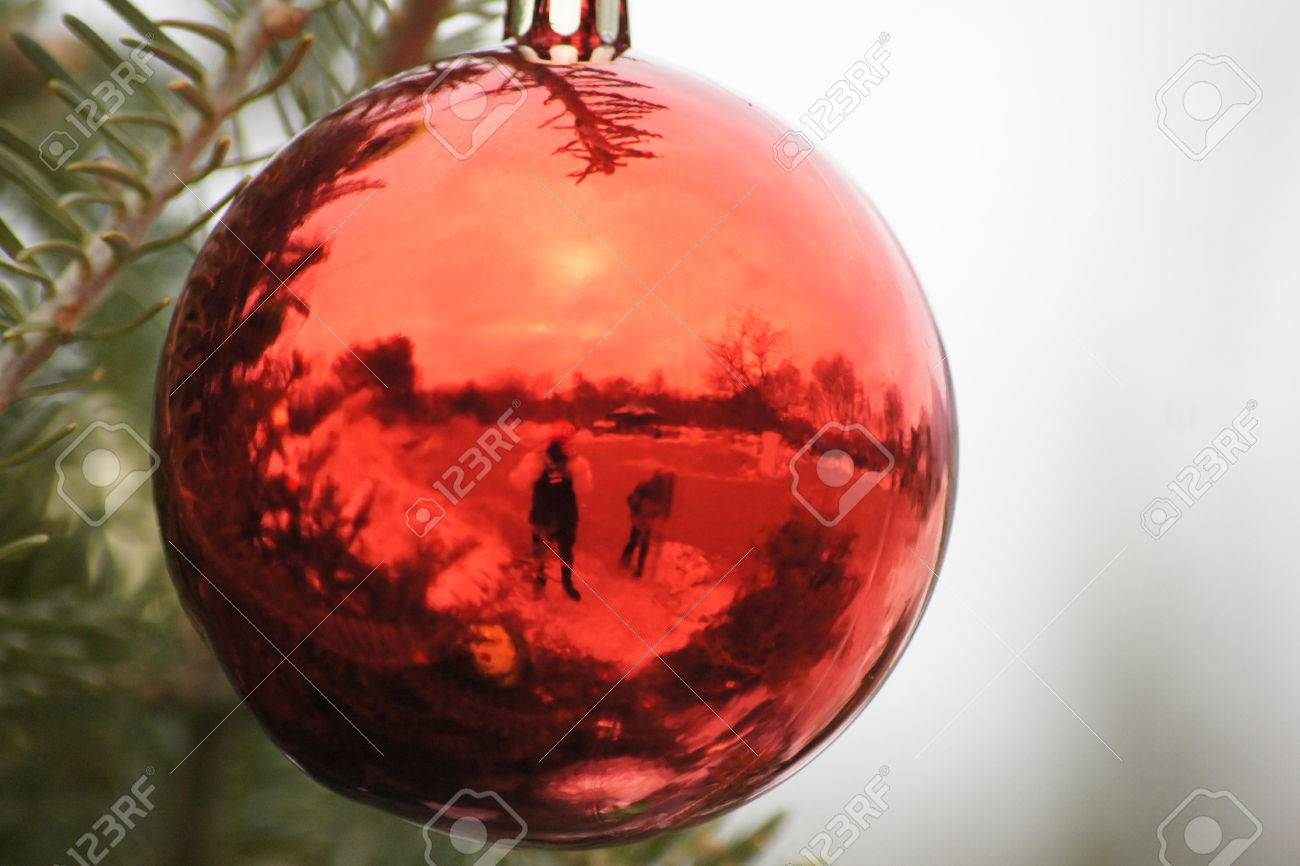 red christmas bulb hanging from evergreen with reflection on stock