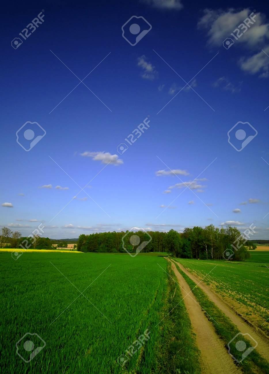 The way Stock Photo - 1826500