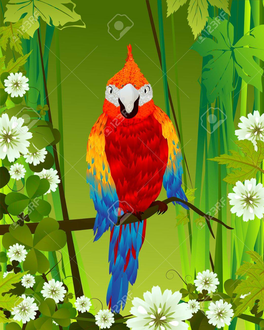 Tropical background with parrot and flowers, graphic art Stock Vector - 13025454