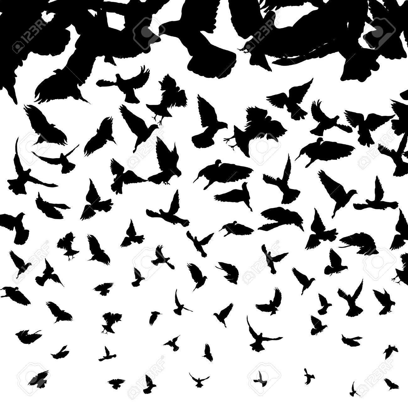 一番好き】 鳥 イラスト シルエット , 1万 + お気に入りの壁紙