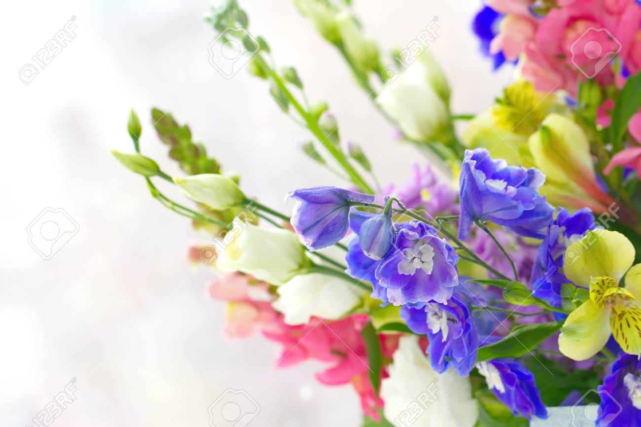 Bouquet Of Spring Flowers On Light Background Stock Photo Picture