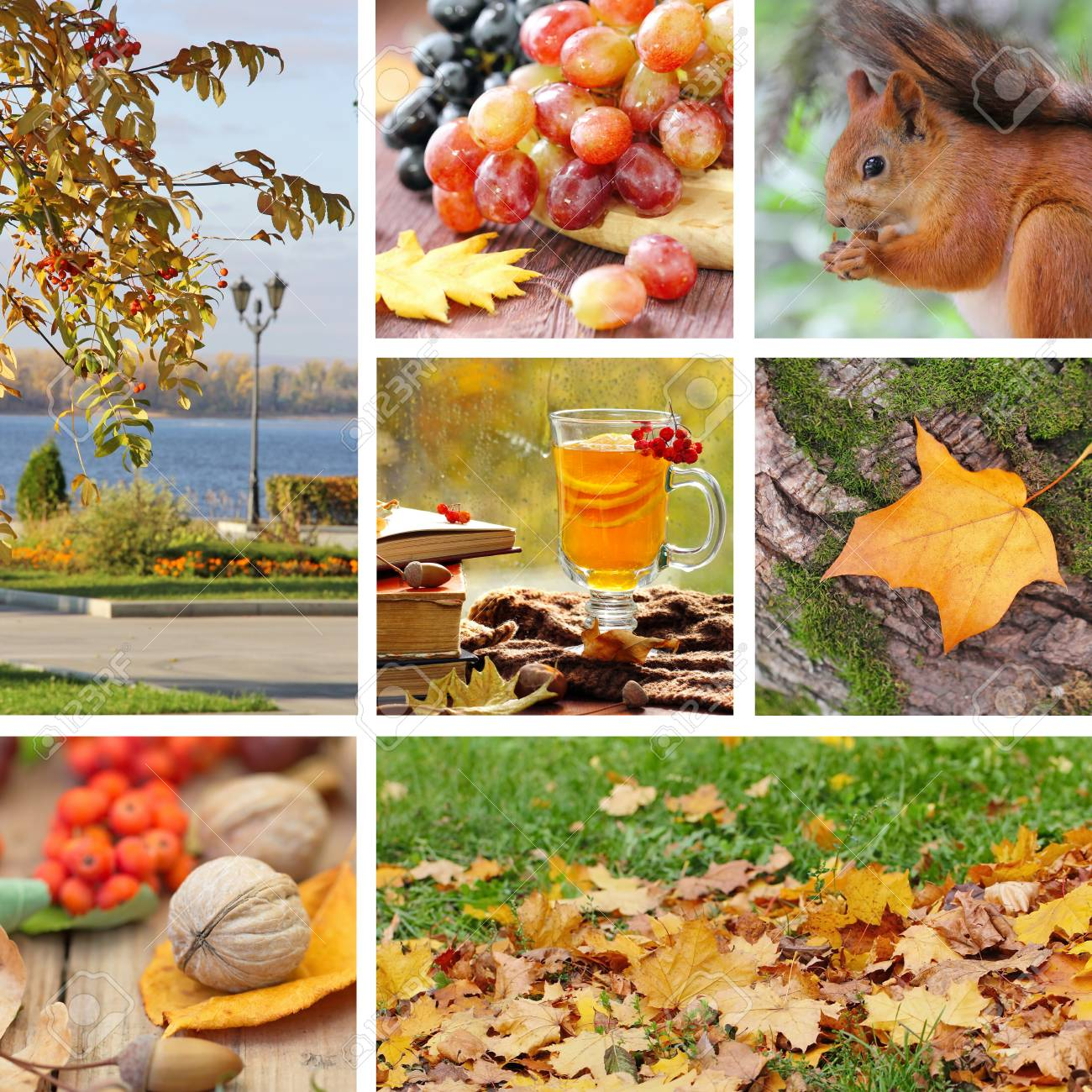 Beautiful Set With Autumn Pictures Seasonal Collage