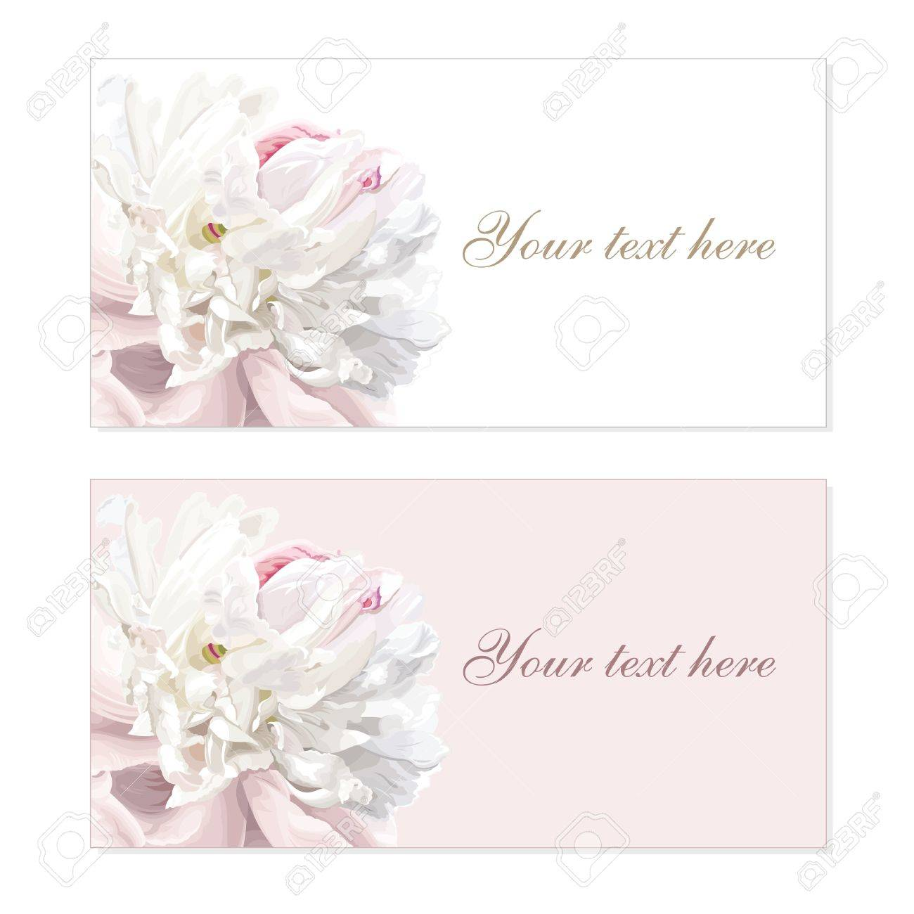 Greeting cards with luxurious flower cards painted in pastel colors Stock Vector - 9931415