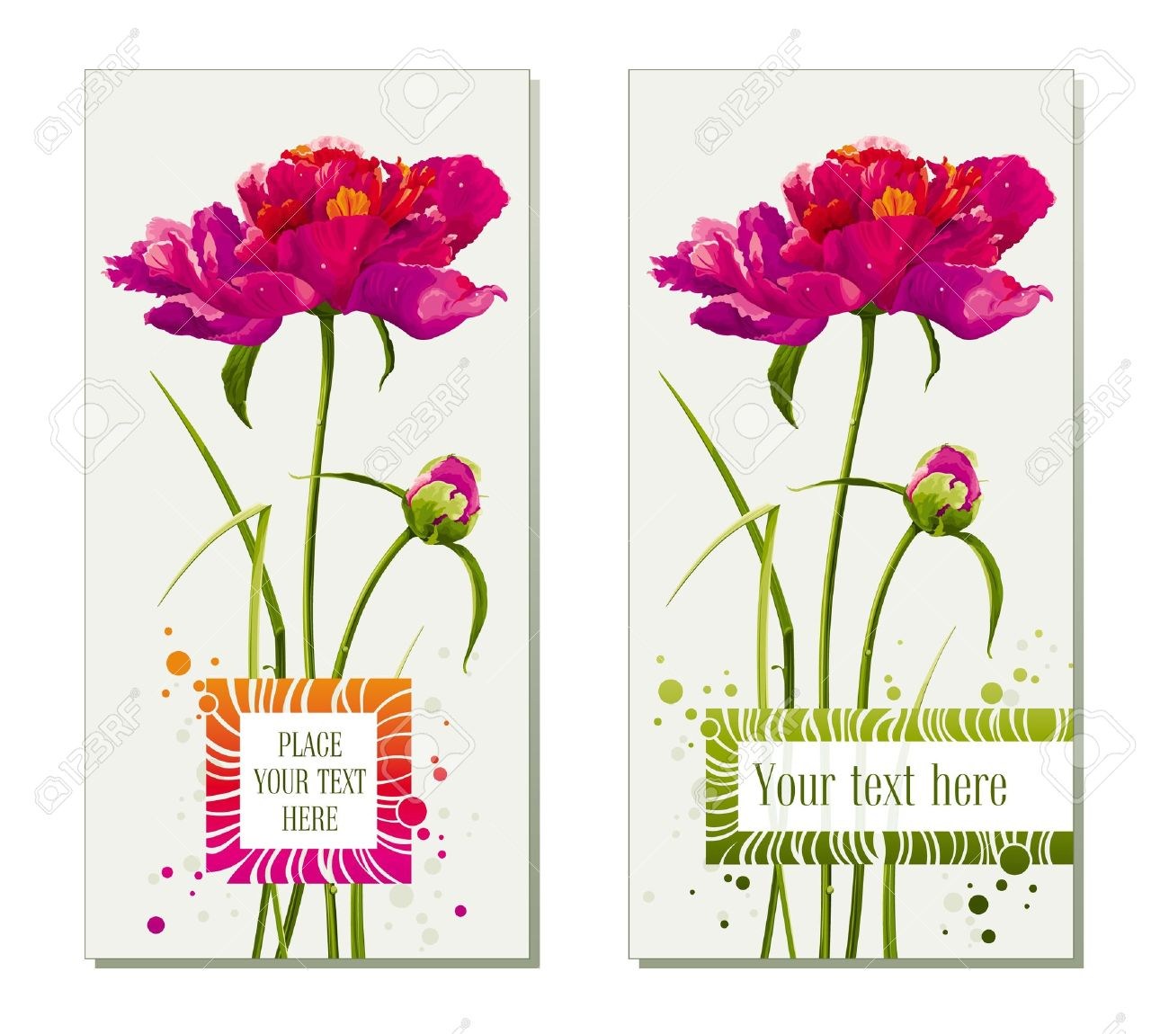 Floral Greeting Cards With Red Peony Flower And Bud Stock Vector