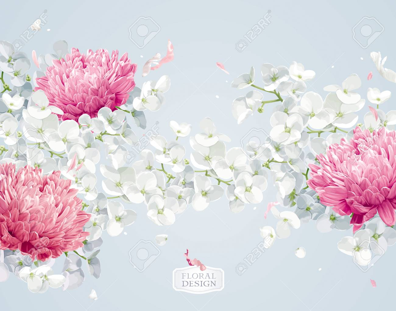 Chrysanthemums And Apple Blossom Flower Vector Background In
