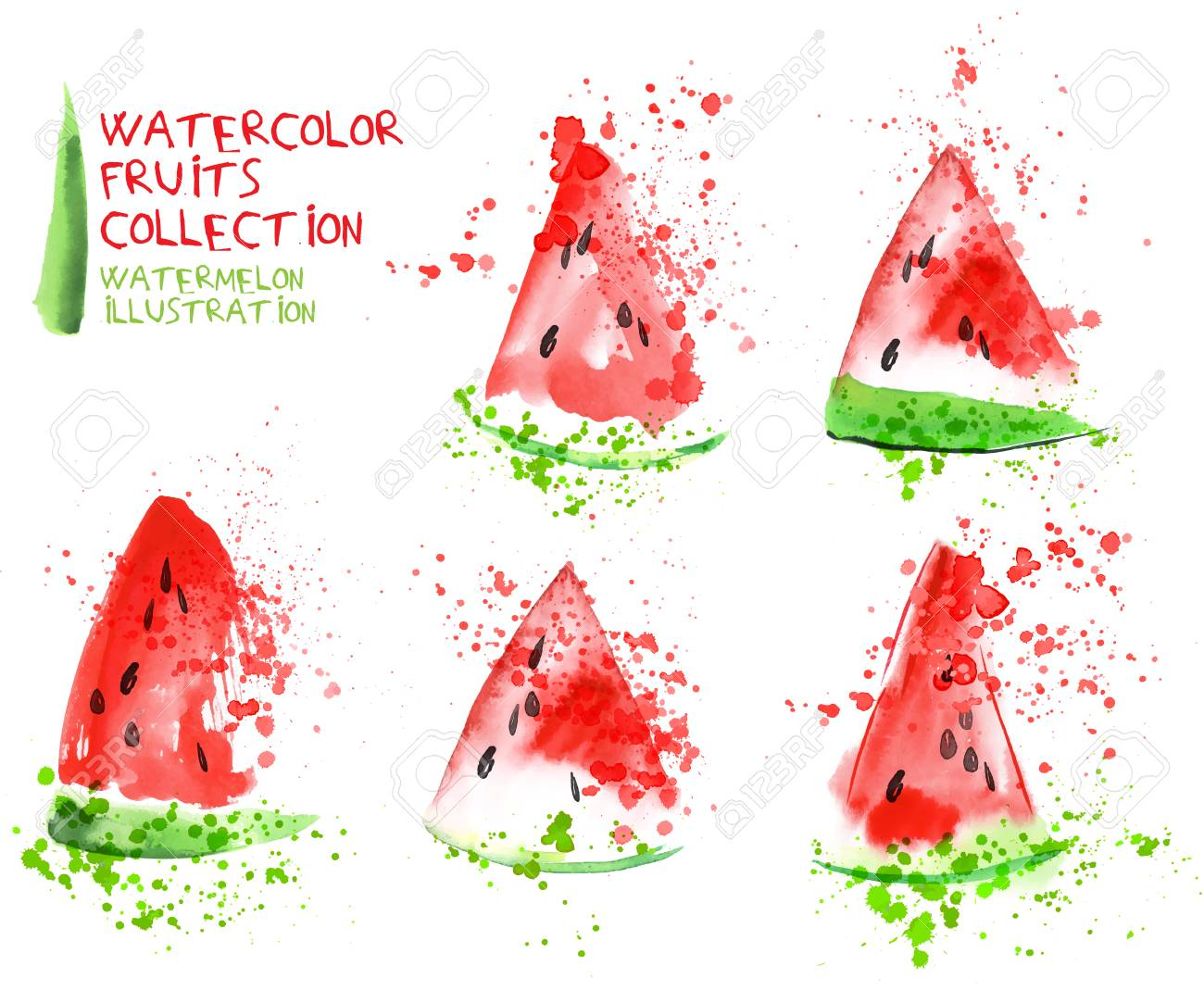 Watermelon Slice Set Watercolor Hand Draw Collection Slice