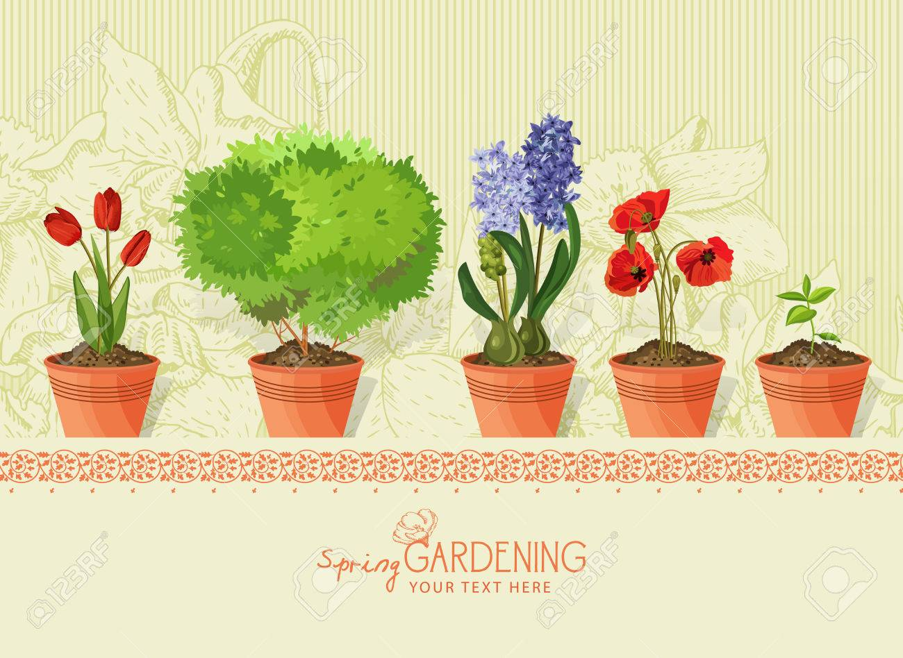 Spring Plants And Flowers In Clay Pot On Beige Background Royalty