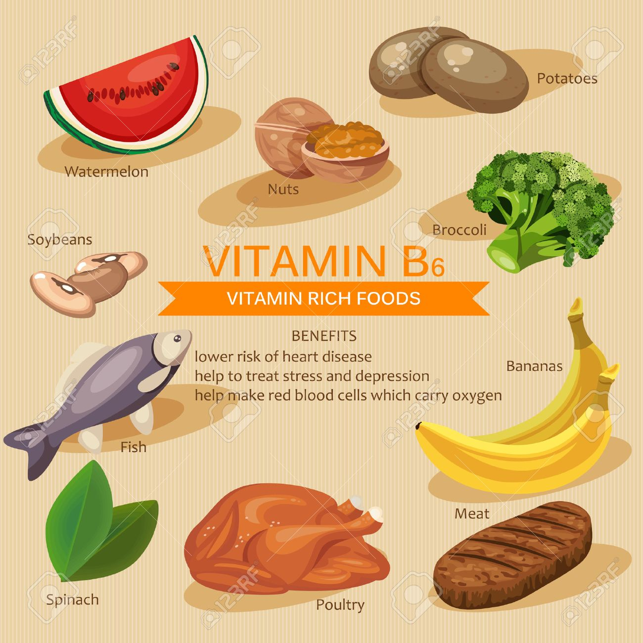 Vitamins and Minerals foods Illustration. Vector set of vitamin rich foods. Vitamin B6. Bananas, spinach, meat, nuts, poultry, fish, potatoes, broccoli and watermelon - 51018578