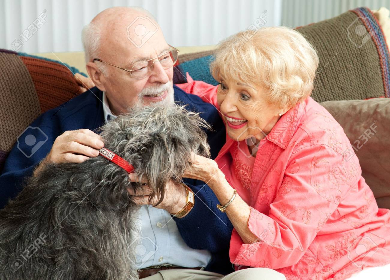 Senior couple at home on the couch, playing with their adorable mixed breed dog. Stock Photo - 13982957