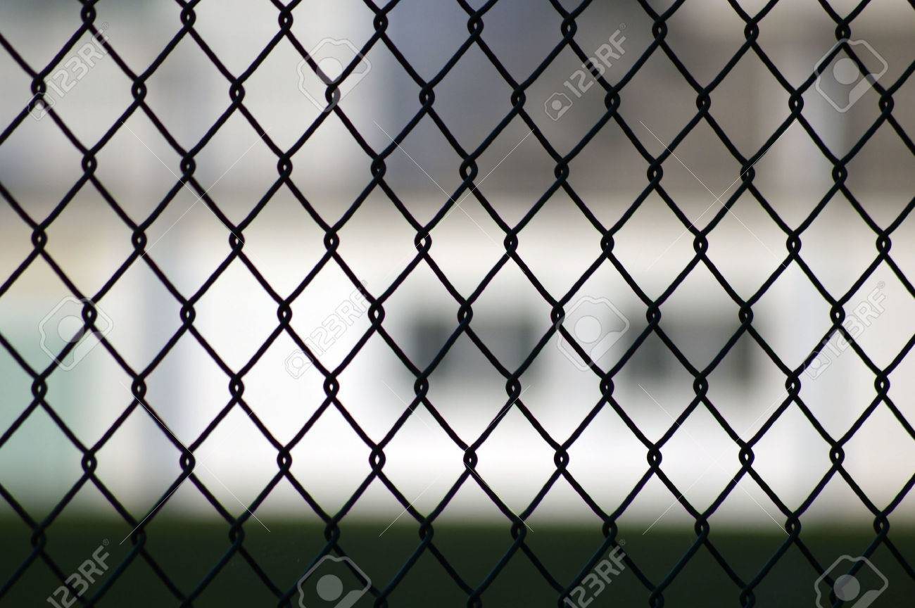 metal grid fence over blurred stock photo picture and royalty free