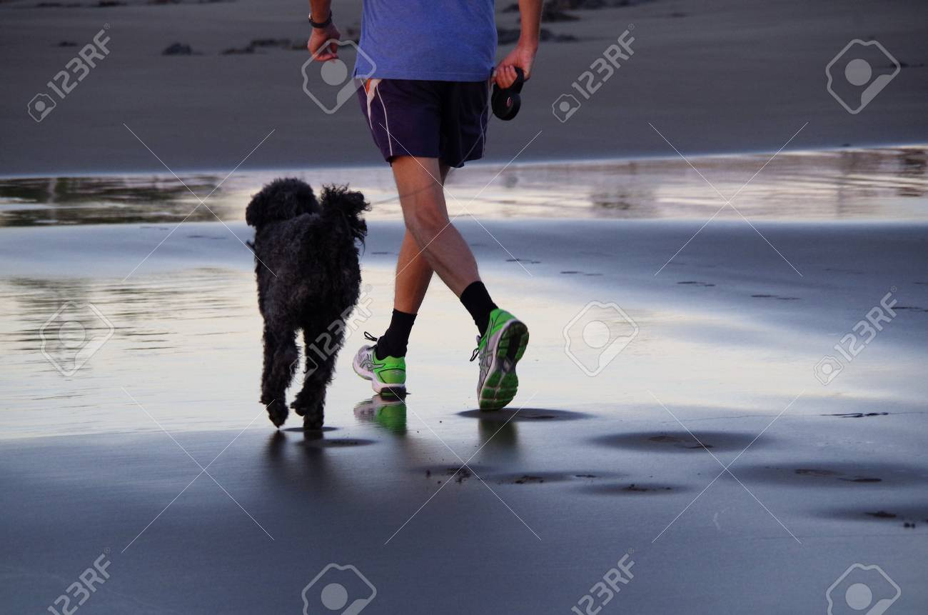 In Shoes A Dog Sports Along The Shore With Man Black Strolling WDYE9I2H