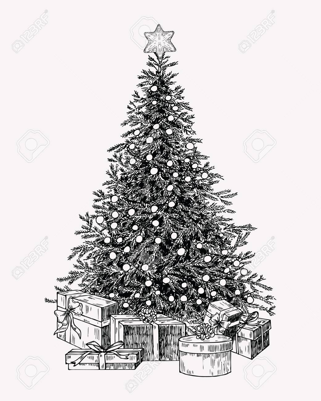 Christmas Tree Vintage Illustration Hand Drawn Holiday Decor Royalty Free Cliparts Vectors And Stock Illustration Image 127095987