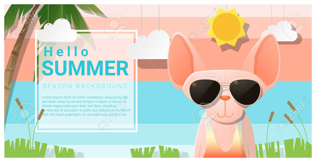 e0a0947b0d71 Hello Summer Background With Cat Wearing Sunglasses