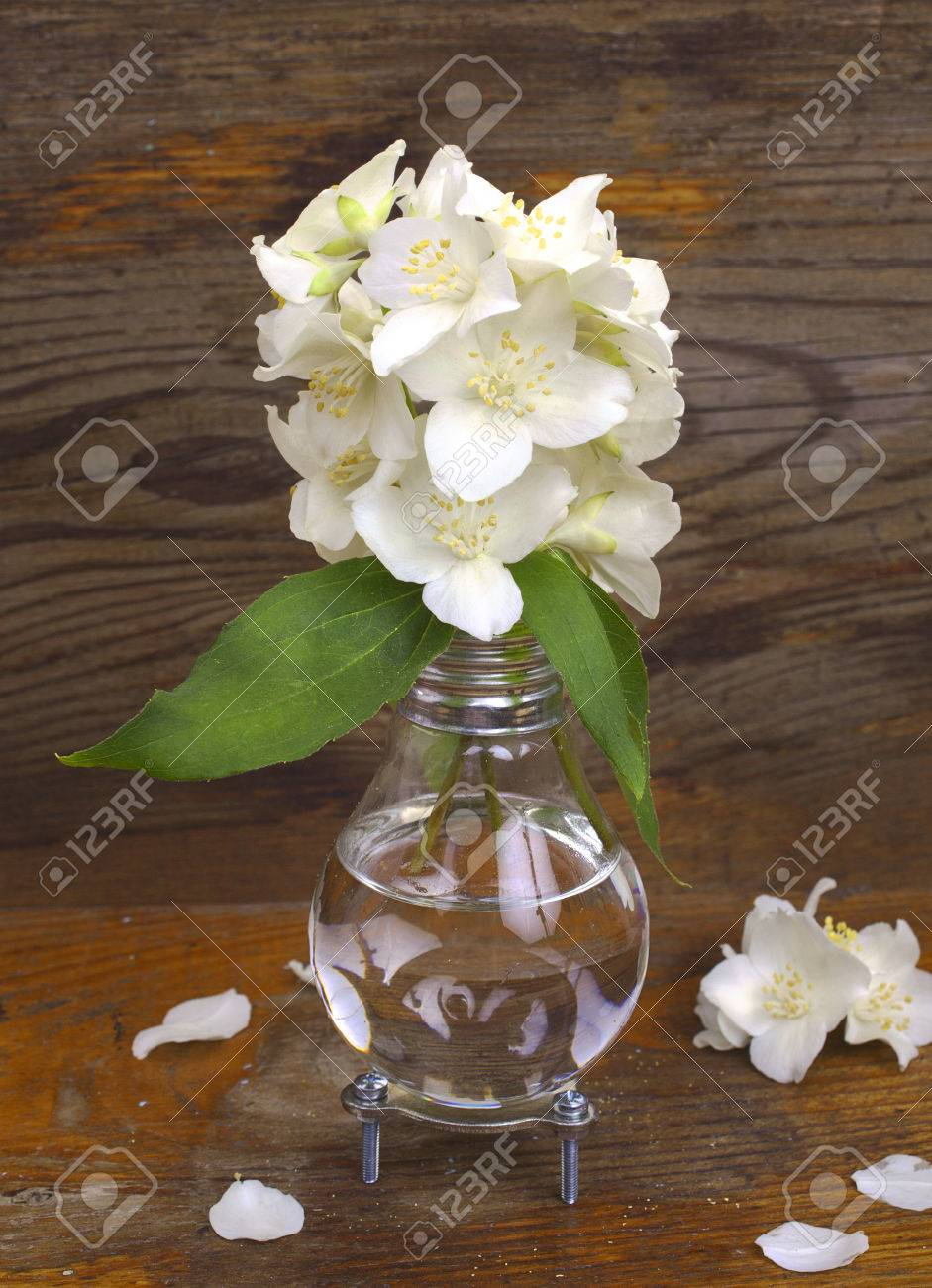 123RF.com & Handmade light bulb vase with jasmine flowers on the background..