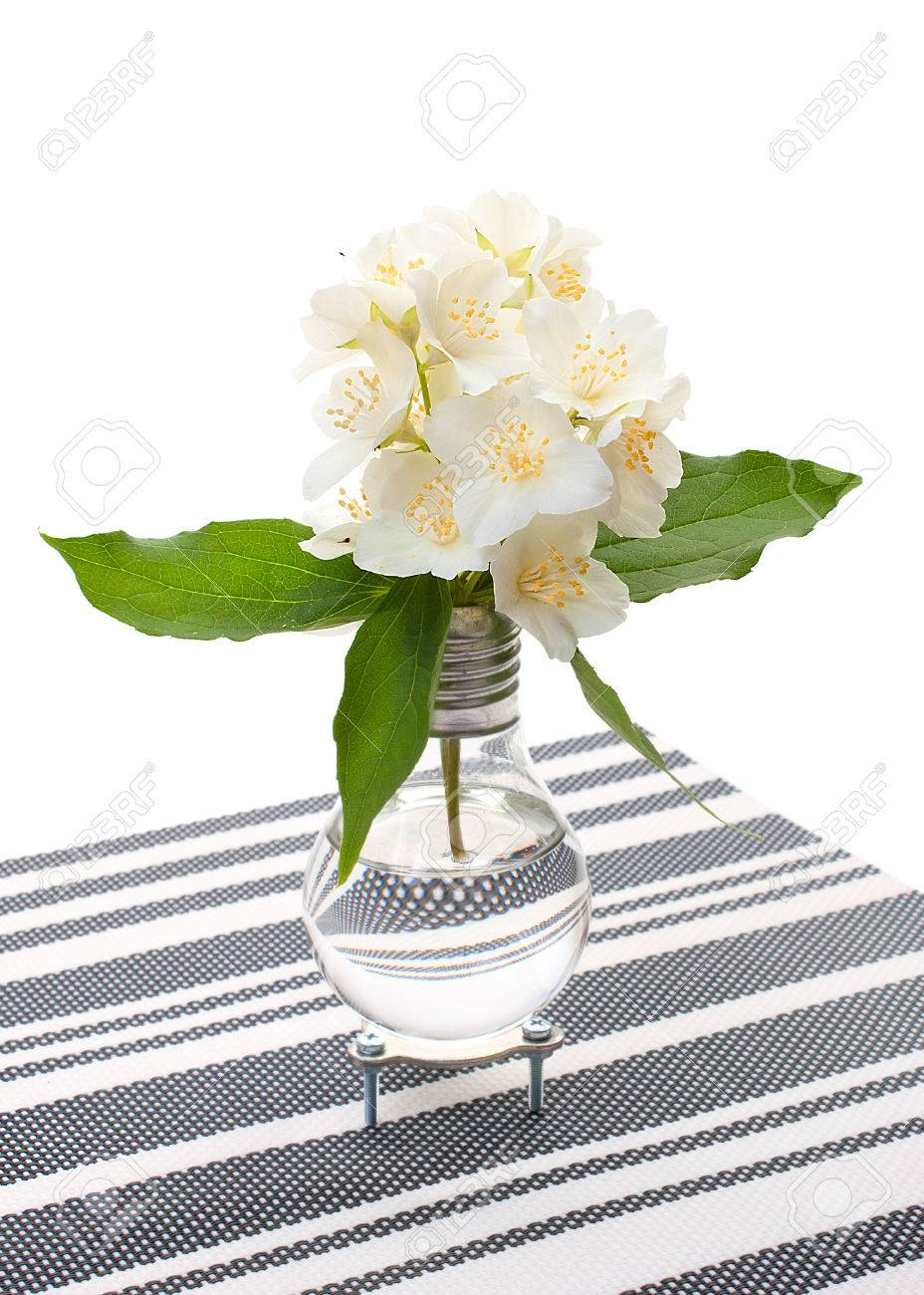 266 & Handmade light bulb vase with jasmine flowers on decorative napkin..