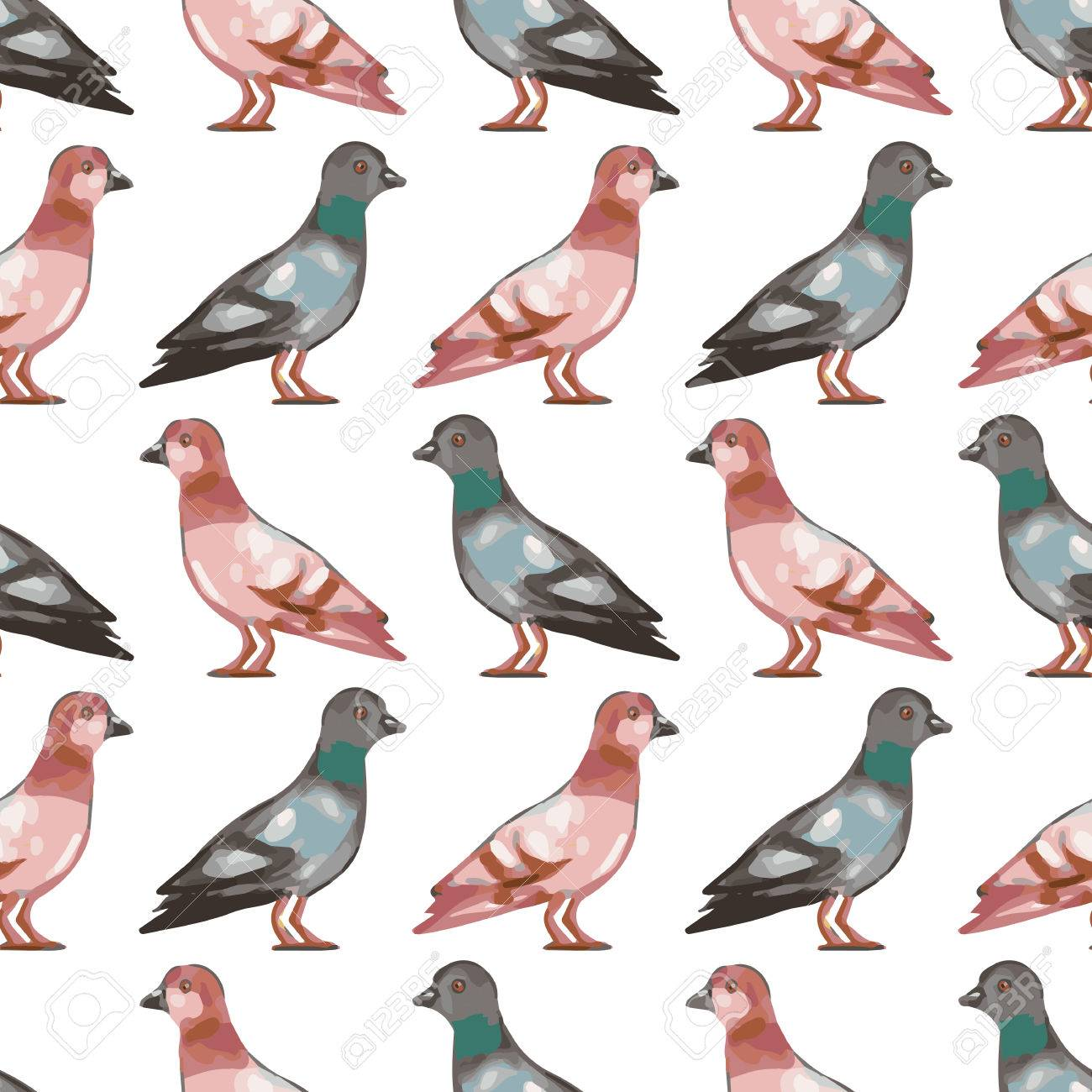 seamless pattern with birds, cute pigeons. vector seamless texture