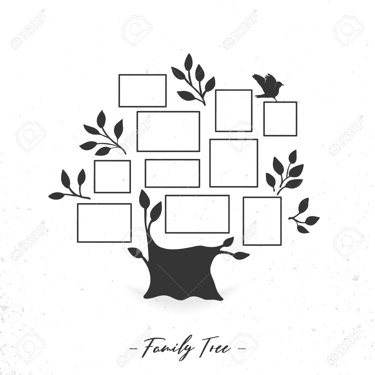 Family Tree With Photo Frames Isolated On A White Background Stock ...