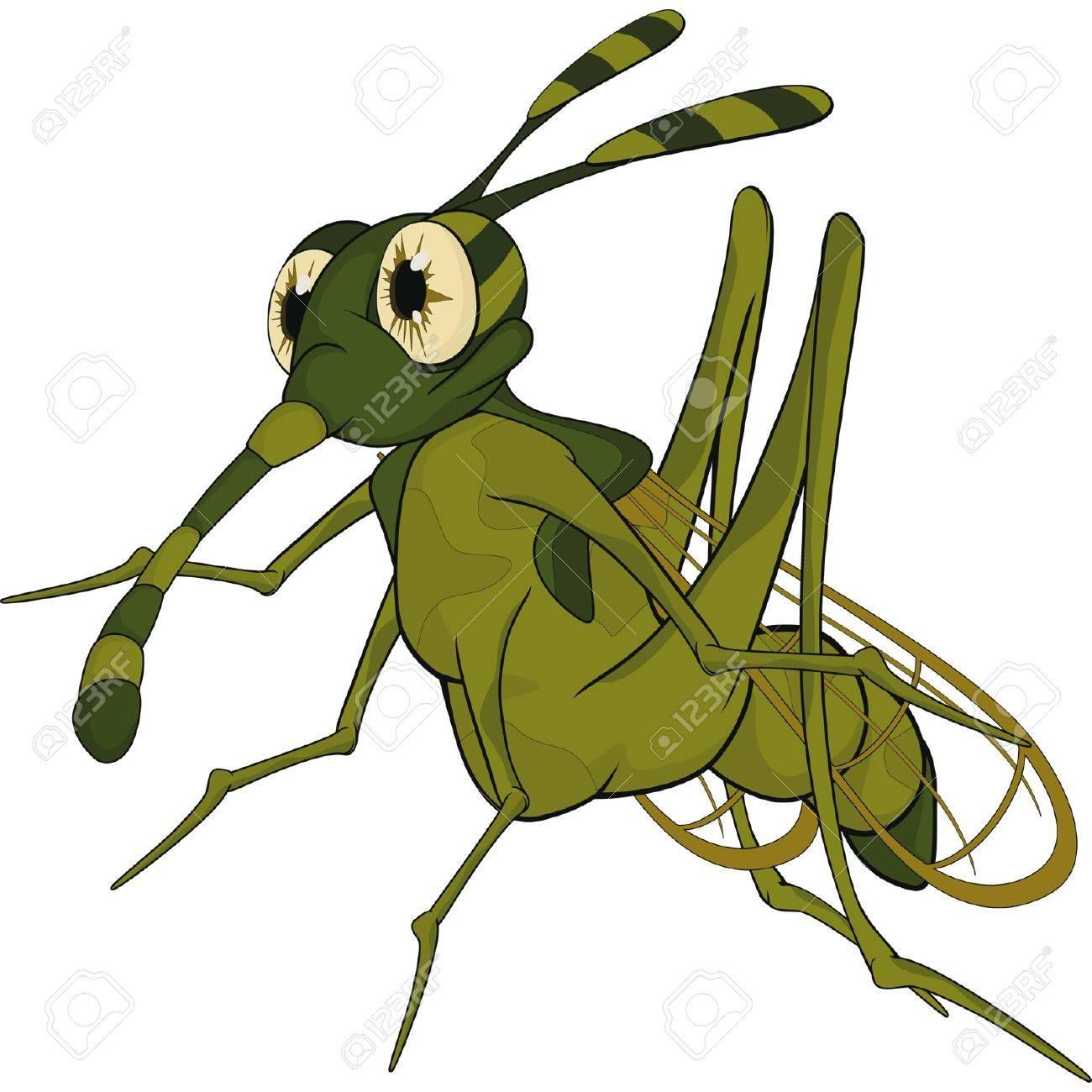 Terrible mosquito  Cartoon Stock Vector - 12801540