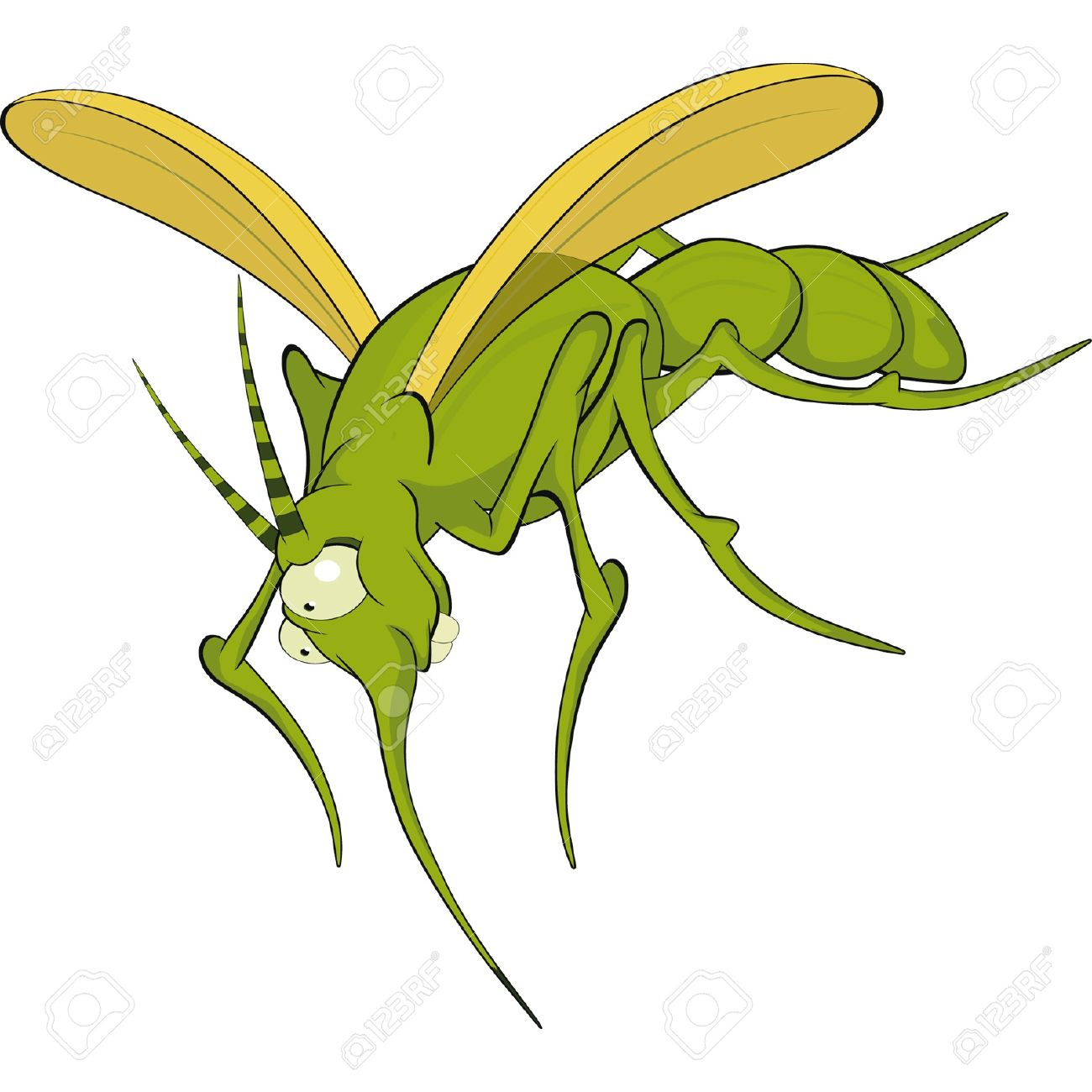 mosquito cartoon stock photos royalty free mosquito cartoon