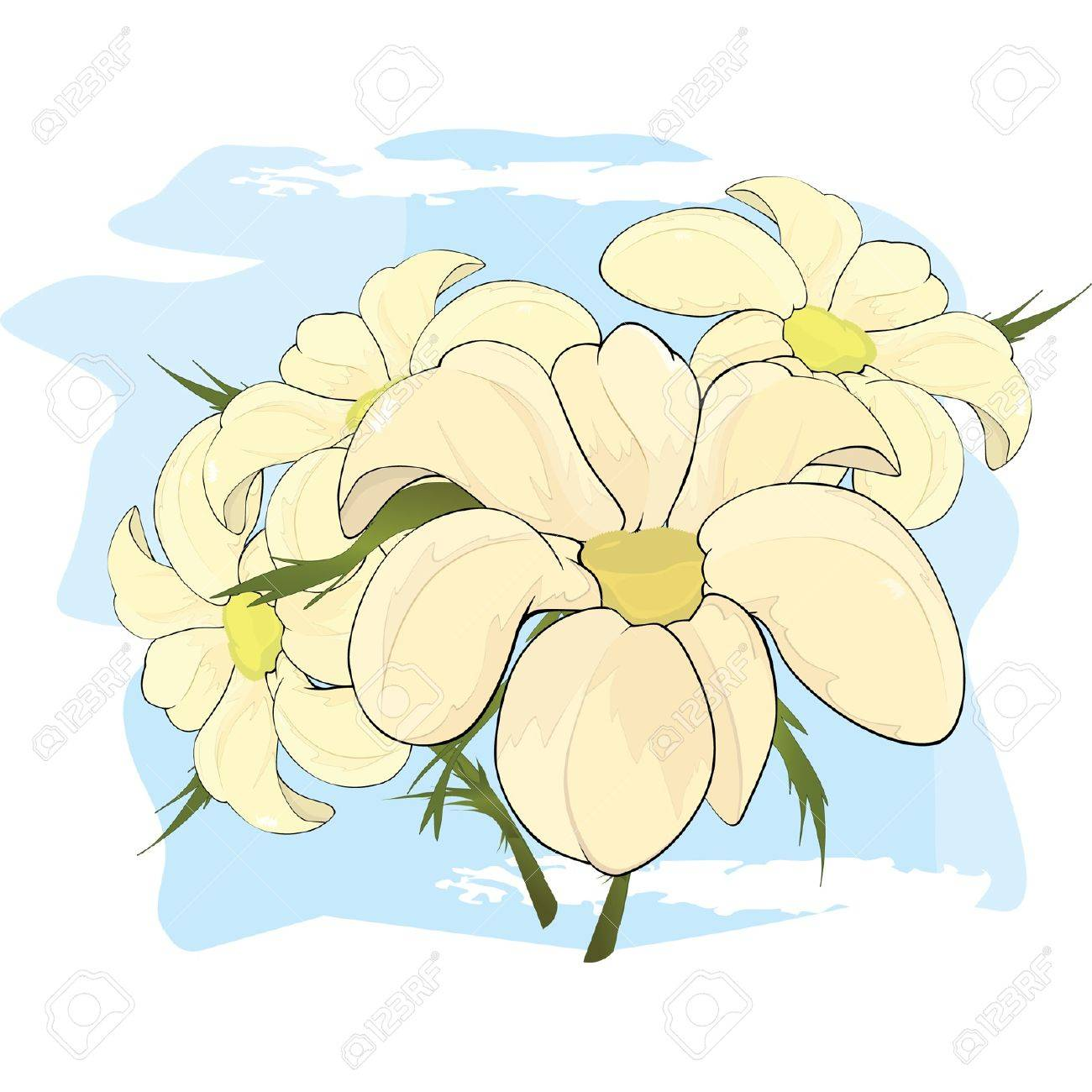 Bouquet of chamomiles. Cartoon Stock Vector - 13423828