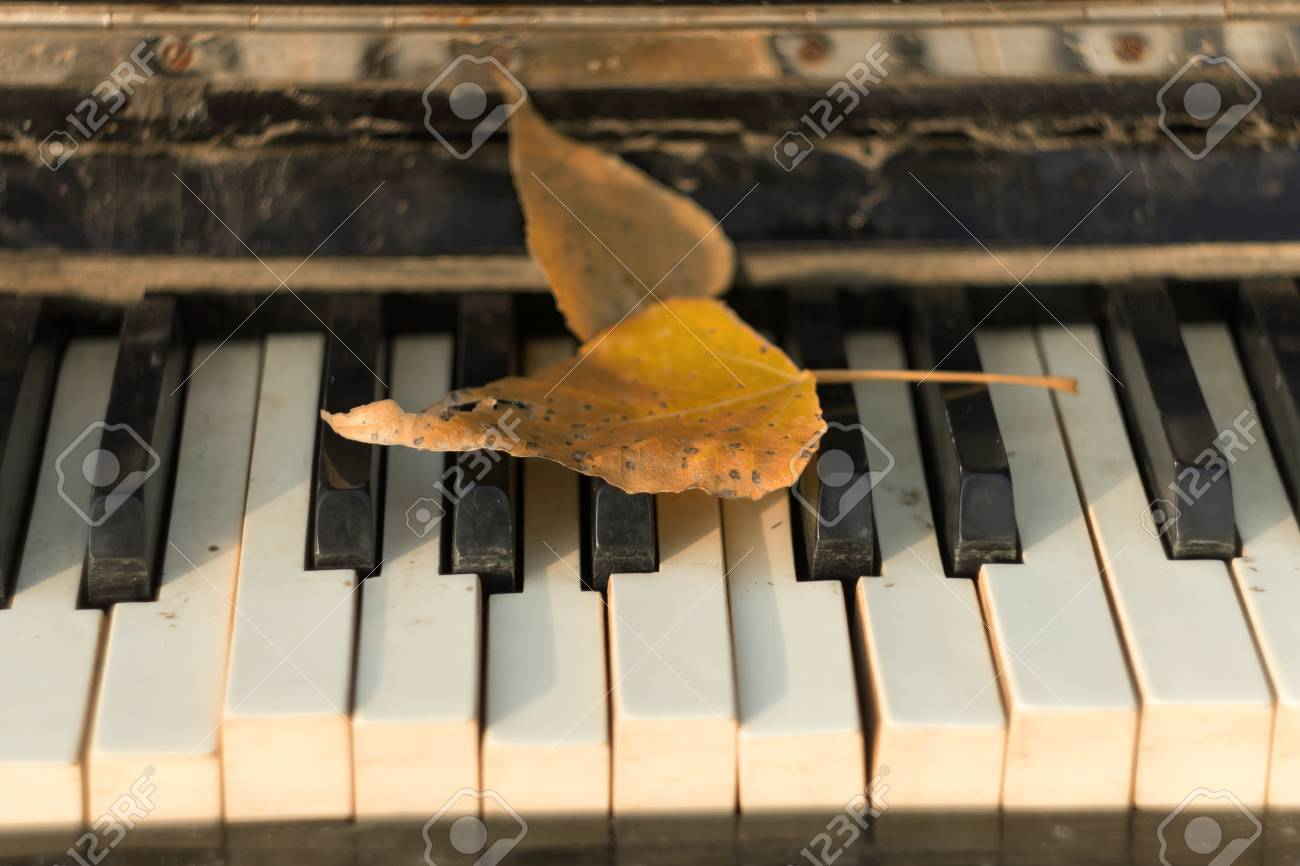 Old piano , autumn leaves on the keys, autumn themes