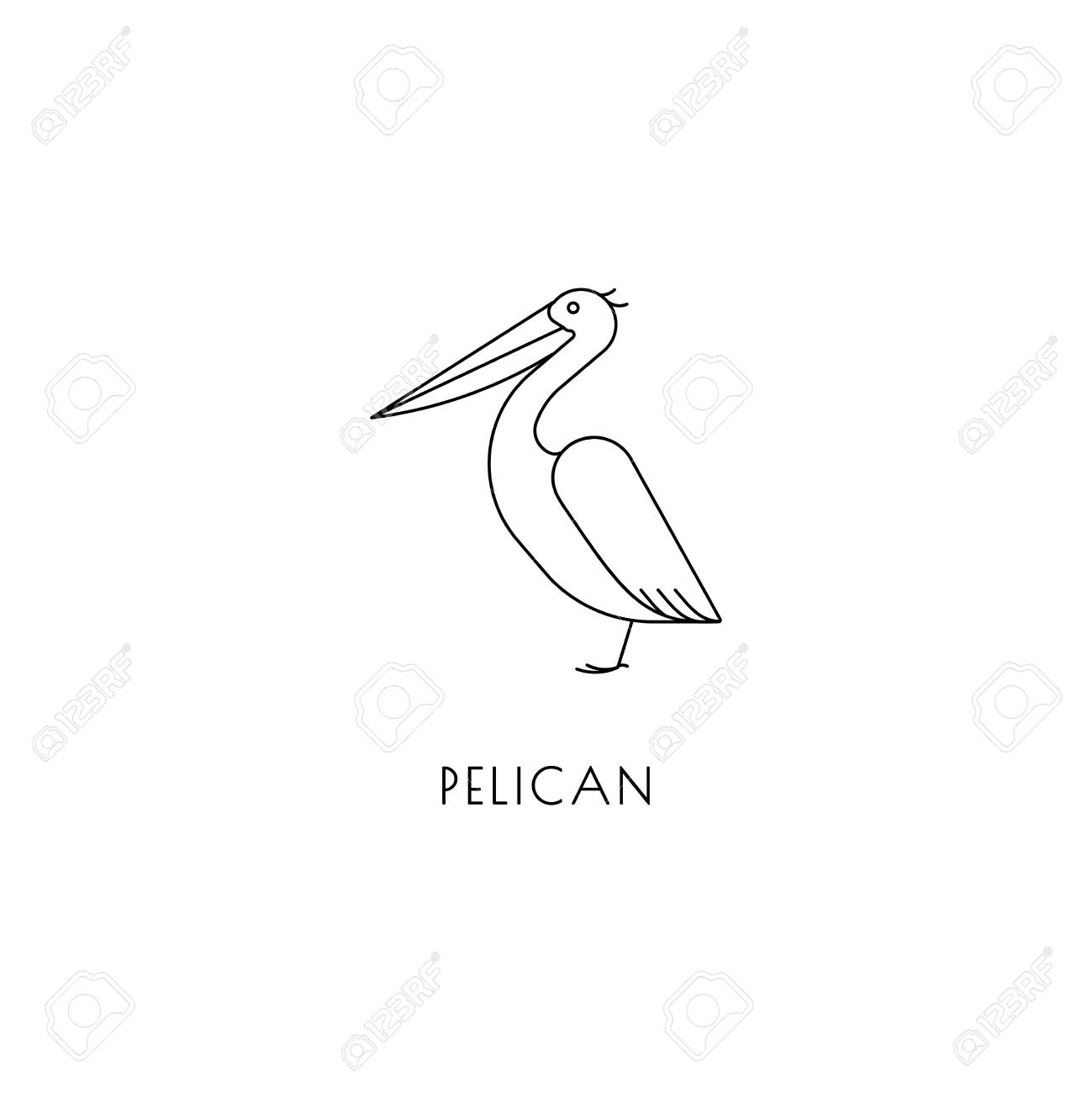 pelican outline icon royalty free cliparts vectors and stock