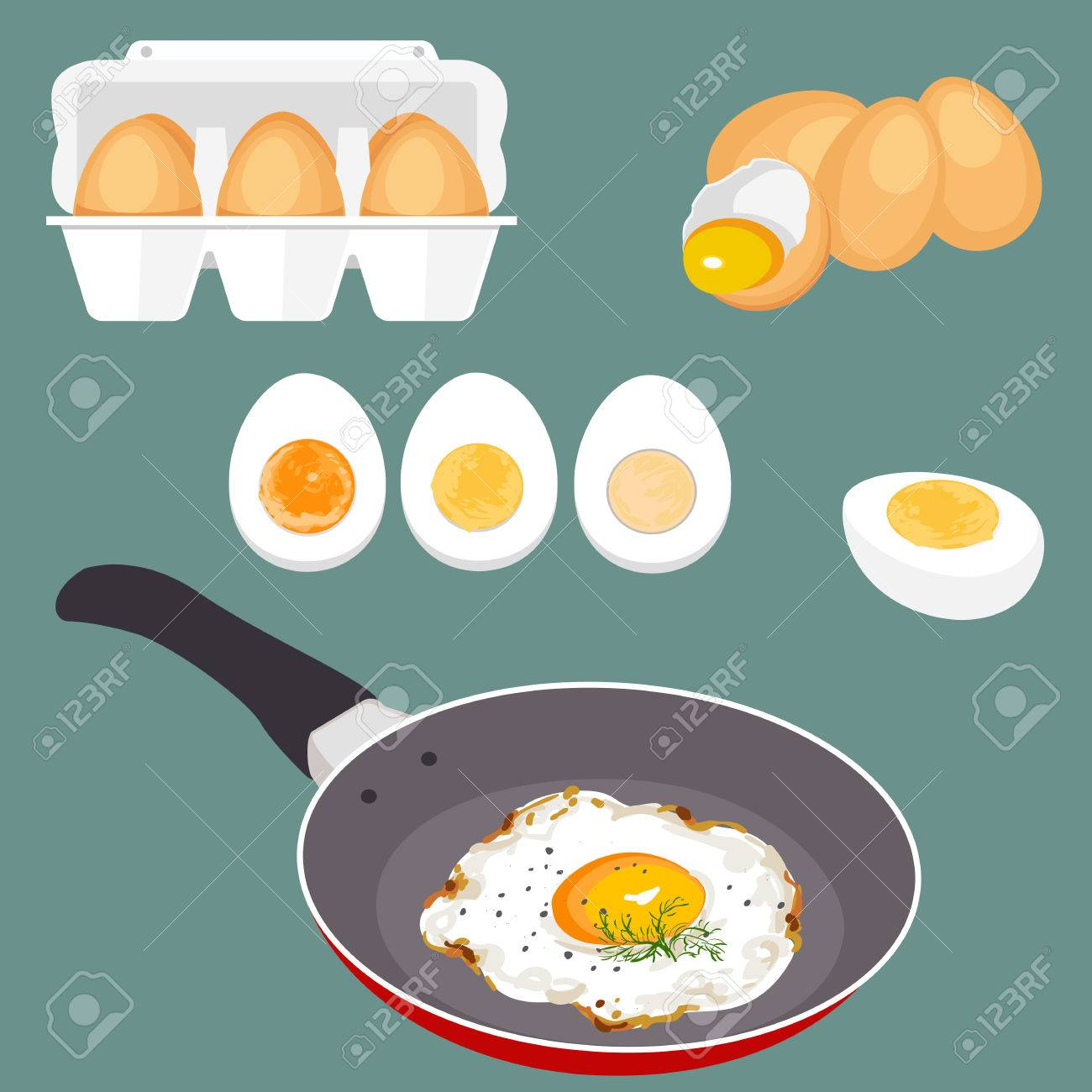 Colorful vector illustration of eggs. Set of cooking and fresh eggs. Eggshell and proteins. Healthy organic food. Diet product with protein. Raw broken cartoon eggs with yolks. - 58069648