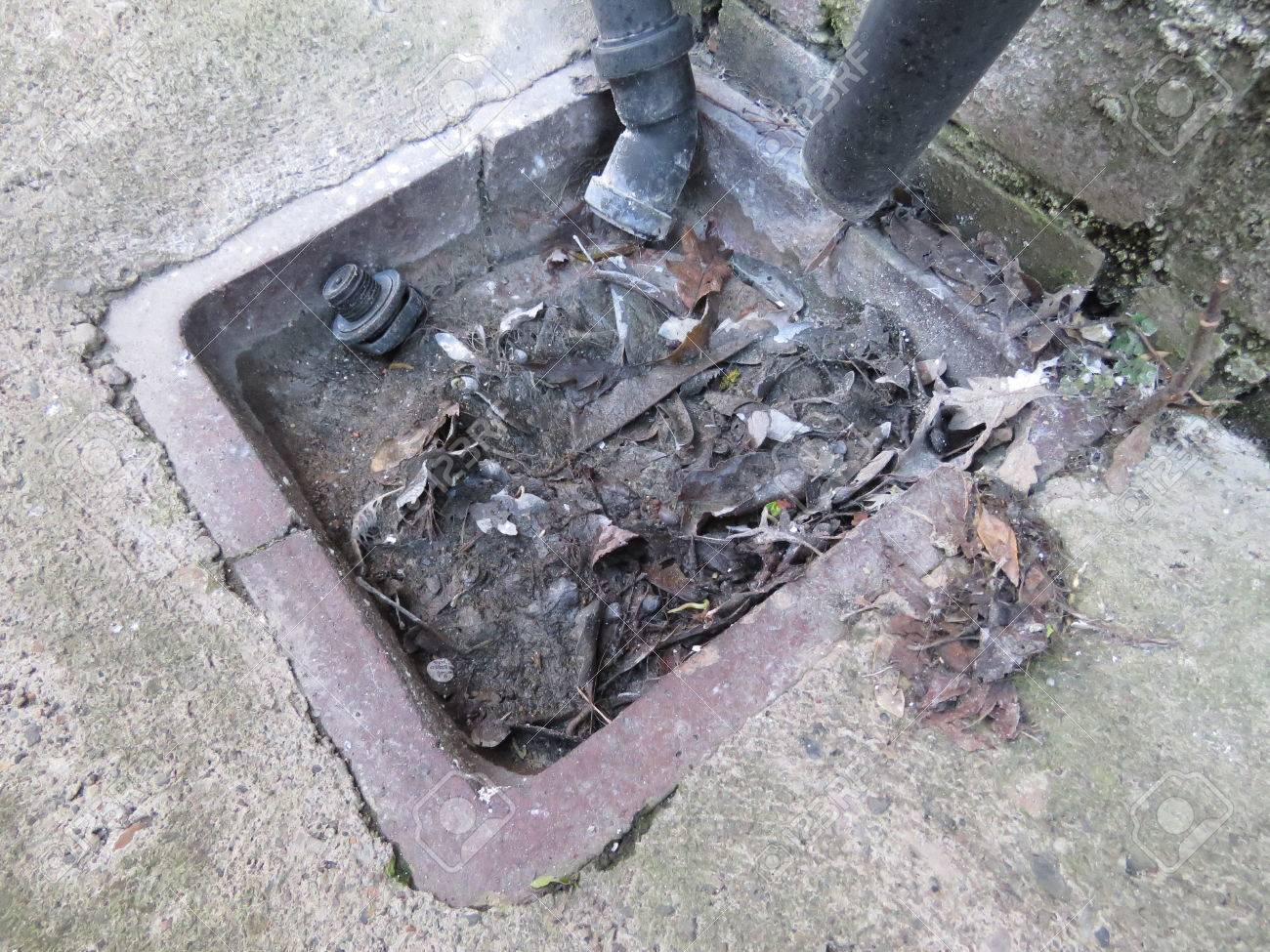 Outside drain, blocked by leaves and rubbish Standard-Bild - 55004889