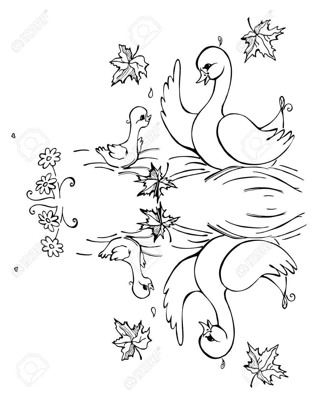 Canard Et Caneton Reflètent Dans Le Lac Noir Et Blanc Illustration Livre De Coloriage