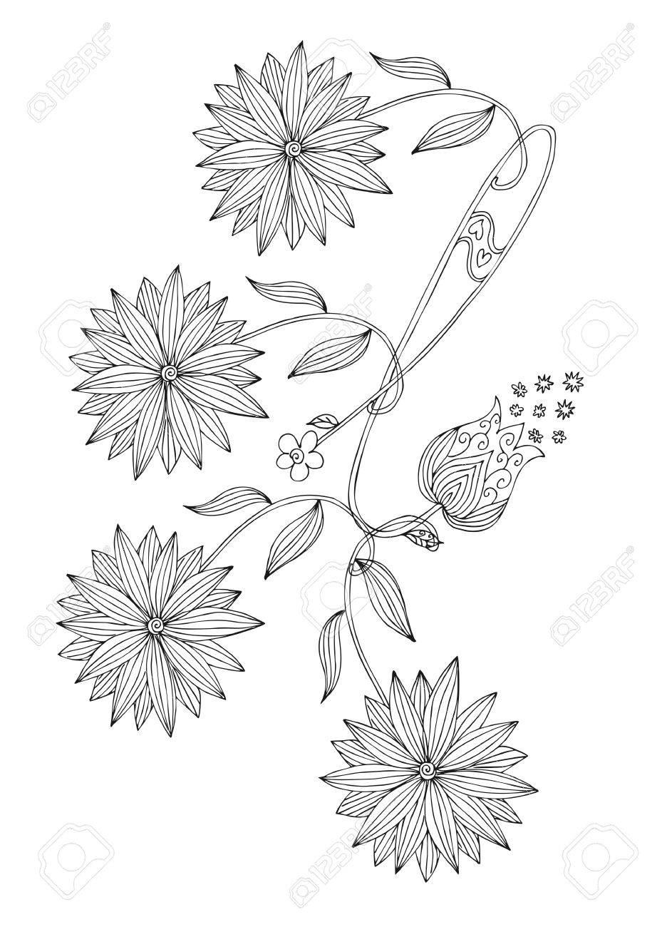 Hand Gezeichnet Doodle Blumen Schwarz Weiß Darstellung Für Malbuch