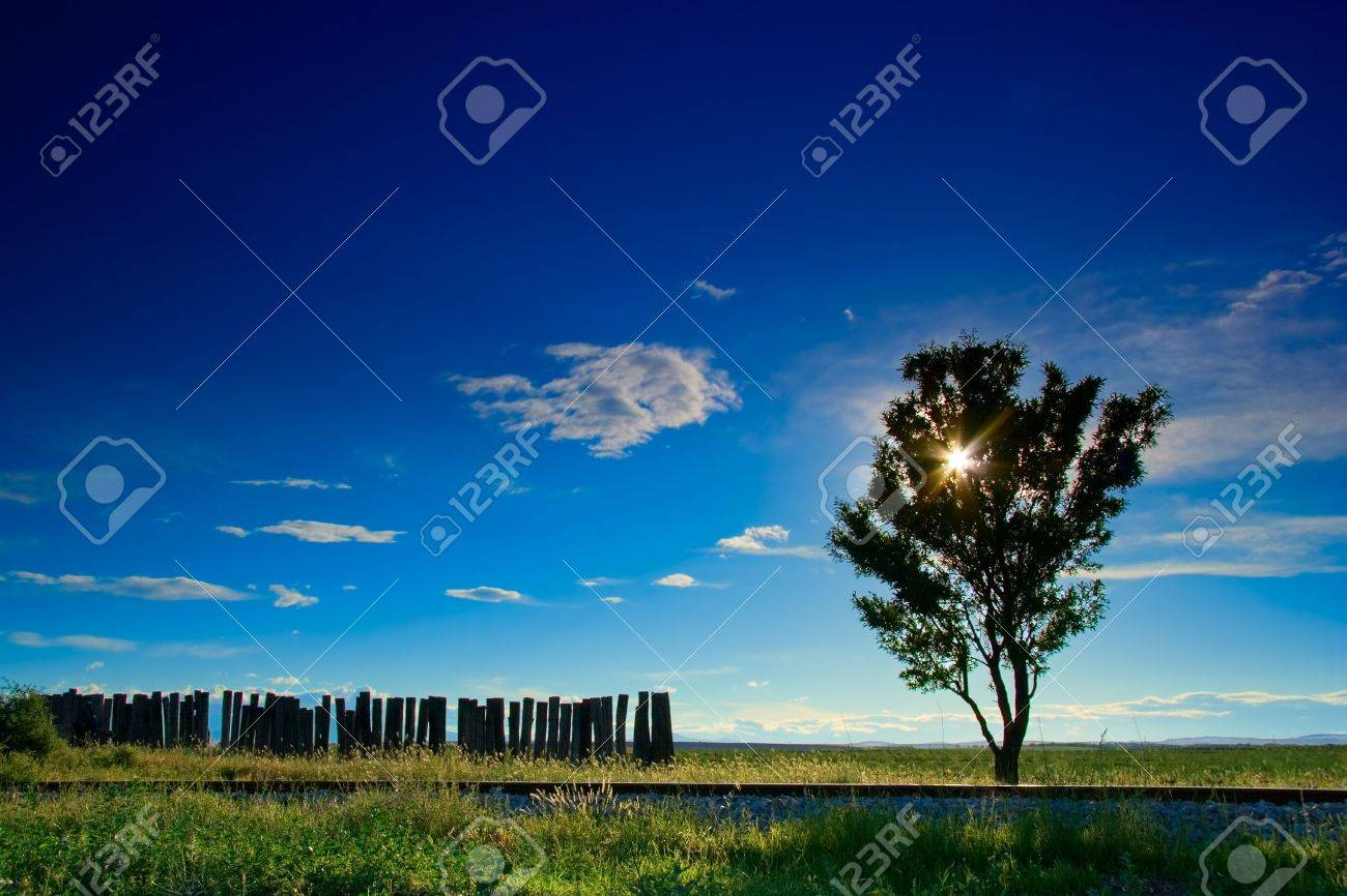 Lonesome tree next to a railway track in the region of Ovce Pole, Macedonia Stock Photo - 490368