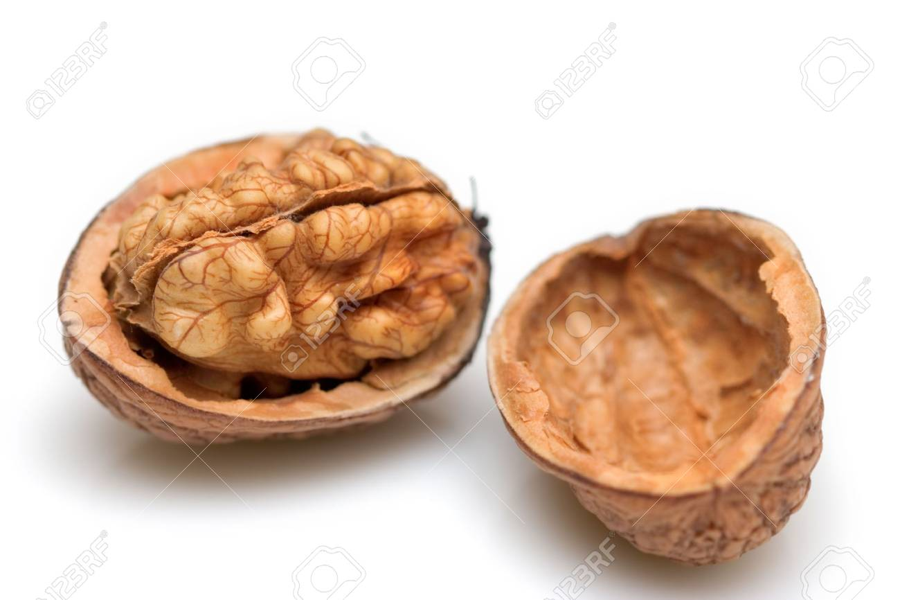Close-up of a walnut against white background Stock Photo - 595144