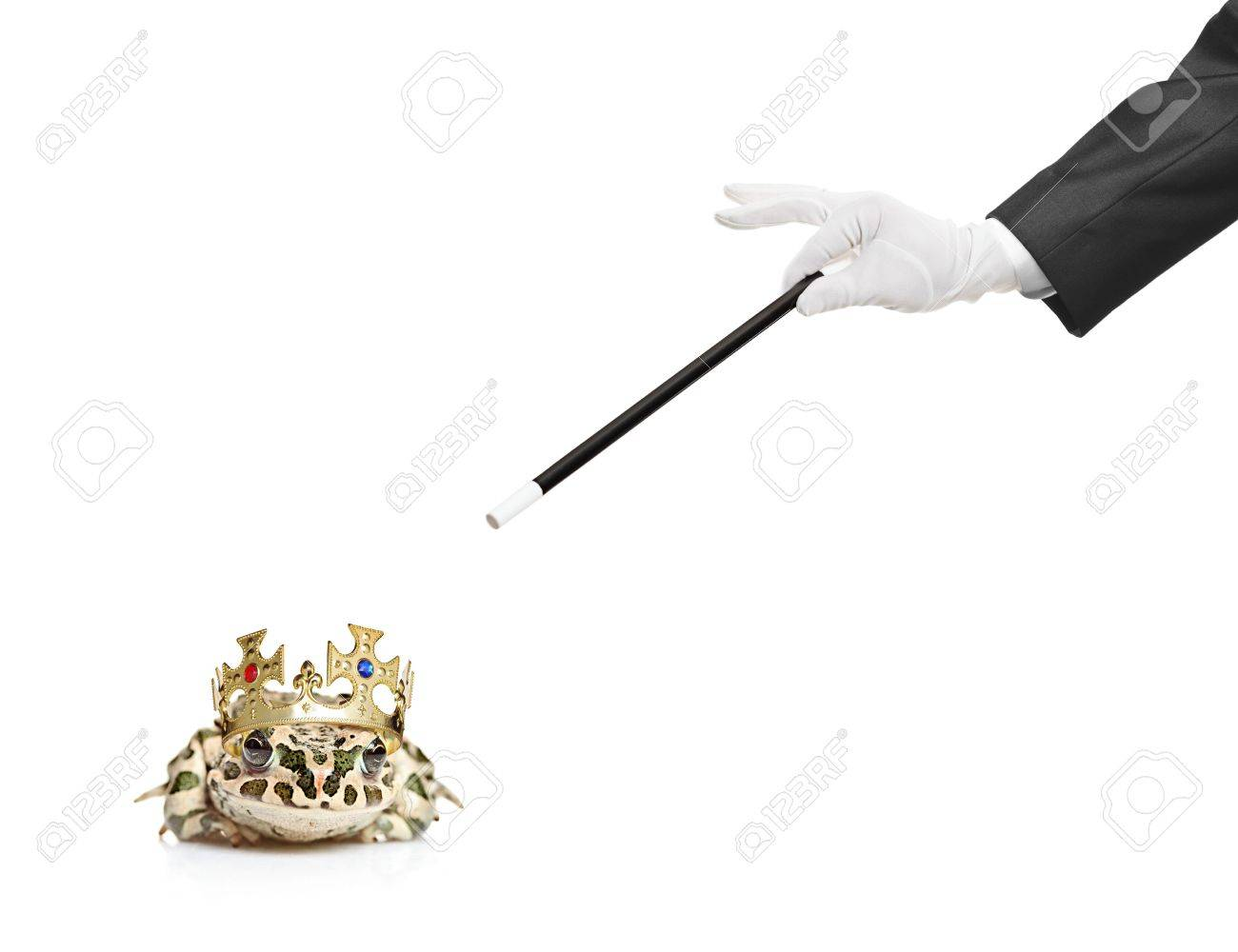 Magician holding a magic wand and a frog isolated on white Stock Photo - 6570058