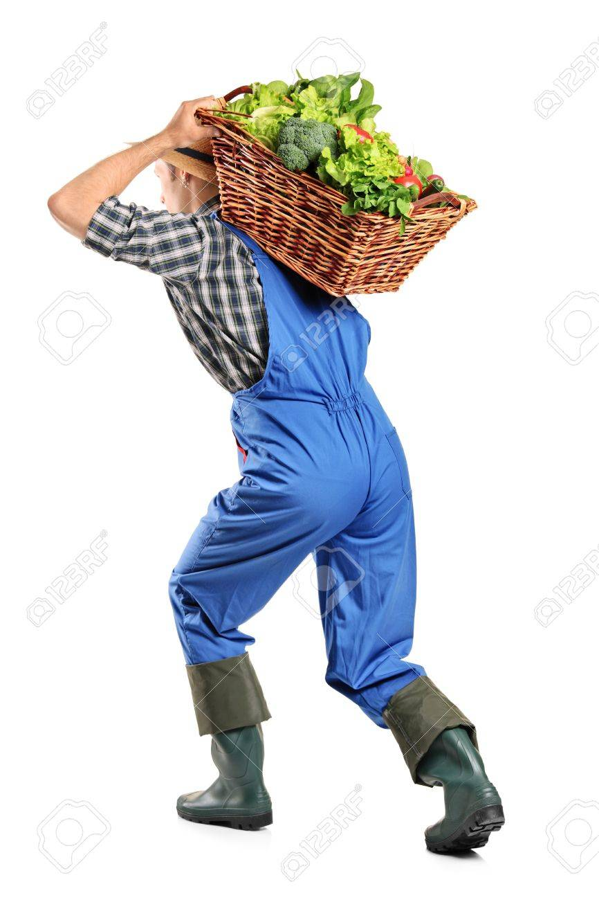 Full length portrait of a farmer carrying a basket of vegetables on his back isolated on white background Stock Photo - 9731732