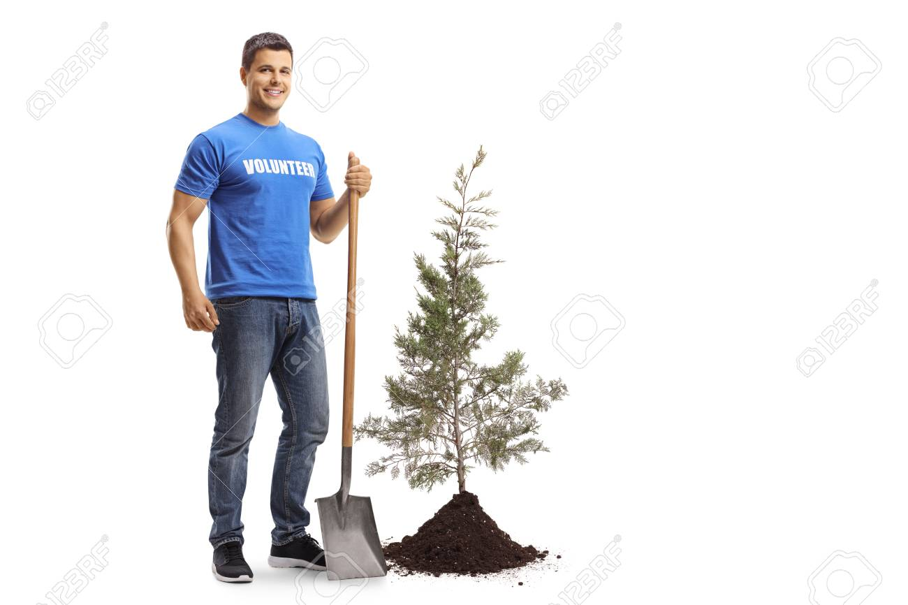 Full length portrait of a young male volunteer with a shovel standing next to a tree and soil isolated on white background - 120409609