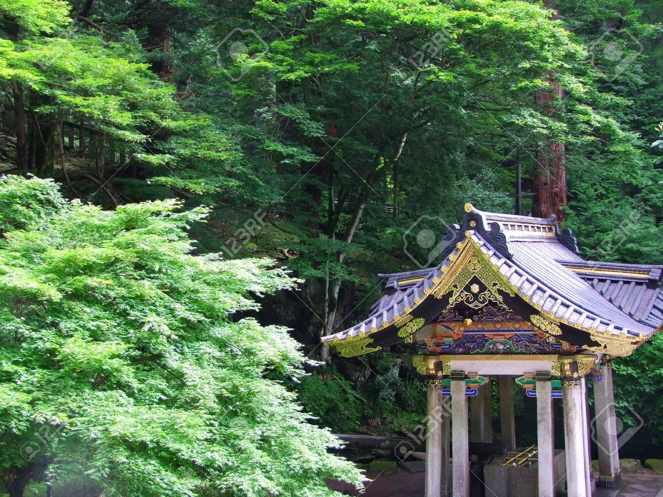 Erable Du Japon Petit un petit sanctuaire japonais coloré est entouré par momiji, Érable du  japon, dans la forêt.