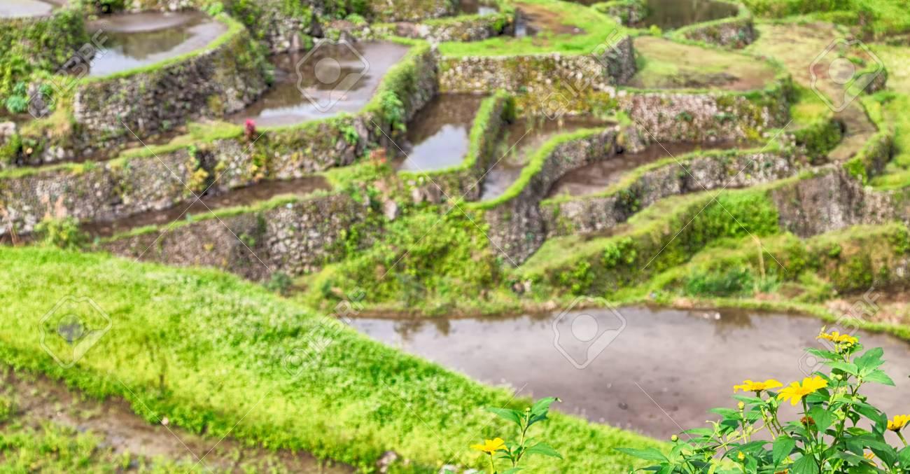 Desenfoque En Filipinas Campo Terraza Para Coultivation De Arroz De Banaue Sitio De La Unesco