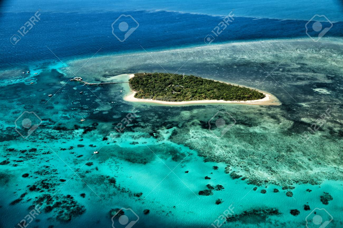 in australia natuarl park the great reef from the high concept of paradise - 91901917